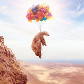 Flying bear with baloons