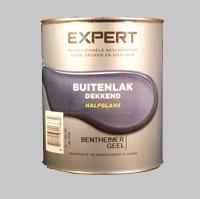 8 Bikken Expert (Sikkens) Buitenlak RAL 7022 Halfglans - 0,75 Liter