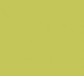 Lakverf Lichtgroen  - 750 ml