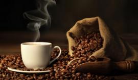 DE PLANTAGE Koffie | 500 gr