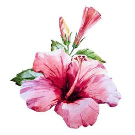 Hibiscus Bloemen | 50gr