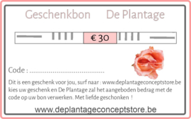 Geschenkbon € 30