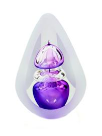 A05OBP Orion B purple Premium a-lijn