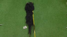 Zwarte paardenstaart (120 cm)