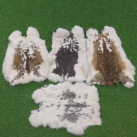 Gevlekte konijnenvachten (circa 50 cm)