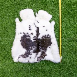 Wit gevlekte konijnenvachten (40-45 cm)
