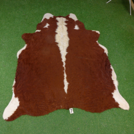 Brown-white cow hide (200 x 170)