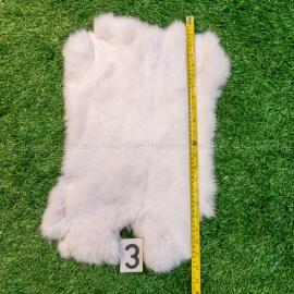 Witte konijnenvachten (40-45 cm)