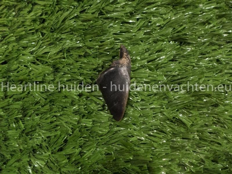 Hertenhoefjes