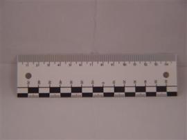 A525 Scheurliniaal blanco per 25 st