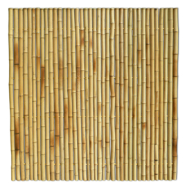 Bamboescherm 180x 180 cm  Geel Extra dik
