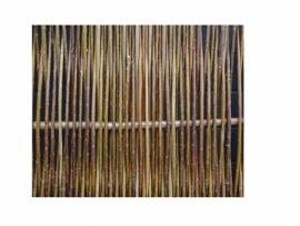 Wilgenscherm Hazo Designo 90x180 cm