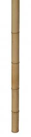 Bamboepaal Geel 200 cm, diameter 50-60 mm