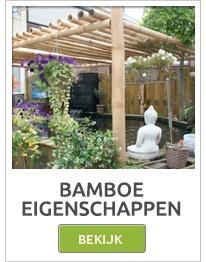 Bamboe rollen, Bamboe schermen, Bamboe schutting, Bamboe matten, Bamboo palen,bamboestokken