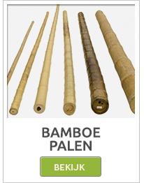 Bamboe, bamboe palen, bamboe matten, bamboe rollen, bamboeschermen