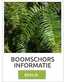 boomschorsmatten,bamboematten,rietmatten,heidematten,wilgenmatten,staalschermen