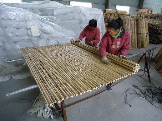 Bamboeschermen, Bamboematten, Bamboe schutting, Bamboes rollen,Bamboestokken,Bamboepalen,Bamboo matten