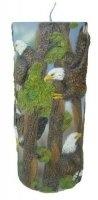 Kaars- 25 cm hoog - Afbeelding-Adelaar