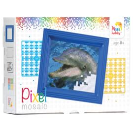 pixelset mini mosaic  dolfijn in verpakking