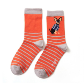 Miss Sparrow Chihuahua Stripes Orange (One Size)