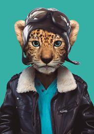 Zoo Portrait Panter