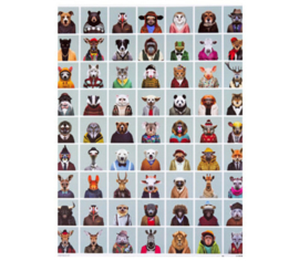Zoo Portraits Poster