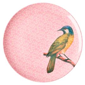 Rice Melamine plate bird pink groot