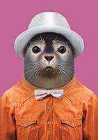 Zoo Portrait Zeehond
