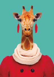 Zoo Portrait Giraffe