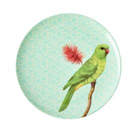 Rice Melamine plate bird green