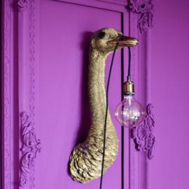 Struisvogel lamp