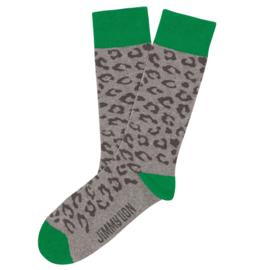 Jimmy Lion - Leopard print