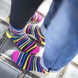 Tintl socks Zebra