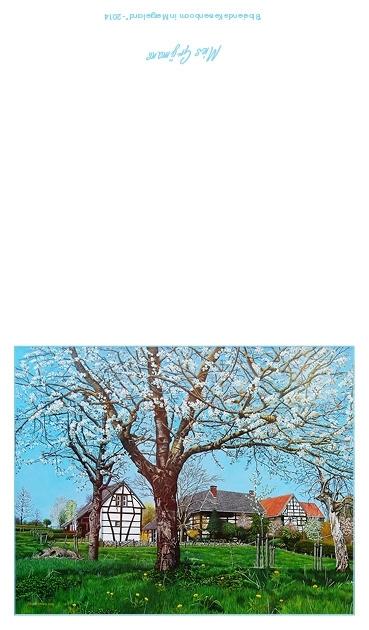 Bloeiende Kersenboom in Mergelland