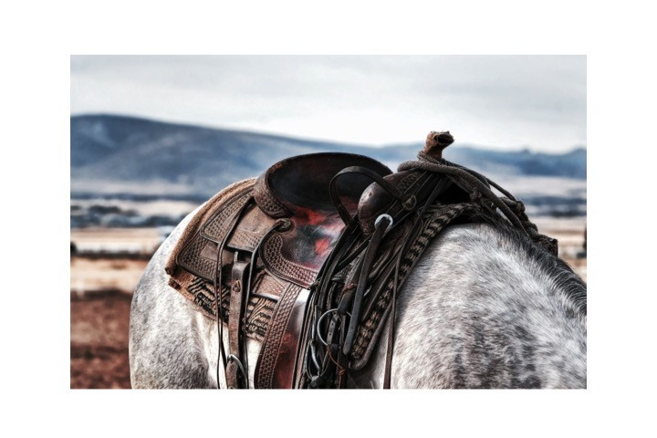Houtprint | Horse
