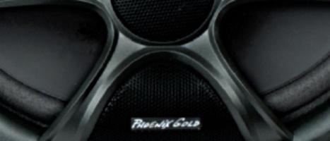 Phoenix Gold RX speakers