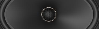 Phoenix Gold MX speakers