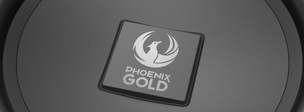 Phoenix Gold RX2 subwoofers