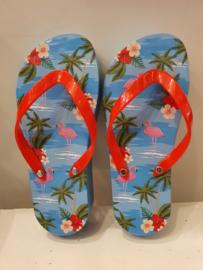 Flip Flop Blik (Flamingo)