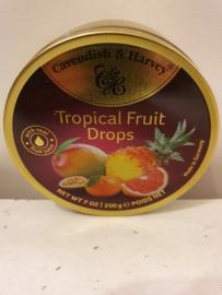 Nostalgisch Blikje Zuurtjes (Tropisch Fruit)