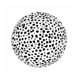 Soccer Ball White Dots