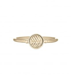 MIAB Ring Goud Fishbone