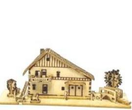 Huis met dakspaan