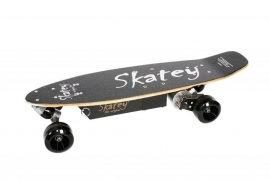 Electrische Skateboards