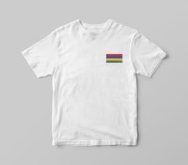 Strijkapplicatie Terschellinger vlag