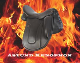 Demo zadel Ástund Xenophon 17 inch