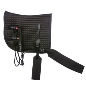 EQUES Core Trainer Lunging System