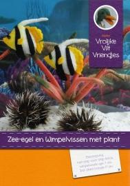 Patroonblad wimpelvissen met zeeegel