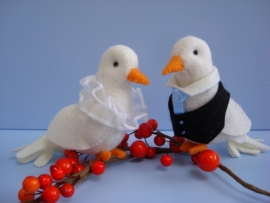Bruidsduifjes