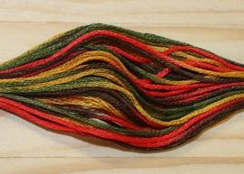 DMC Coloris - Ete indien - 4511